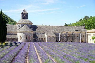 Camping Le Luberon : Abbaye De Senanque 1595627 1920