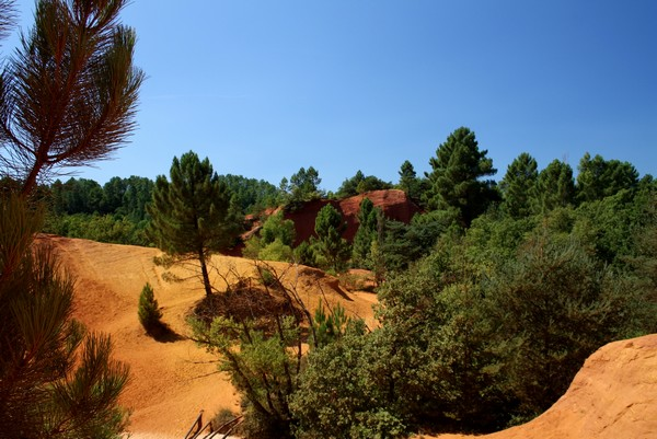 Camping Le Luberon : Colorado Provencal