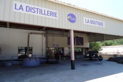 Camping Le Luberon : Distillerie Les Agnels