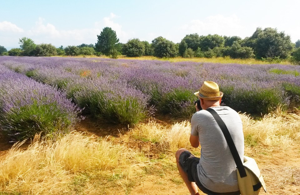 Camping Le Luberon : Guide