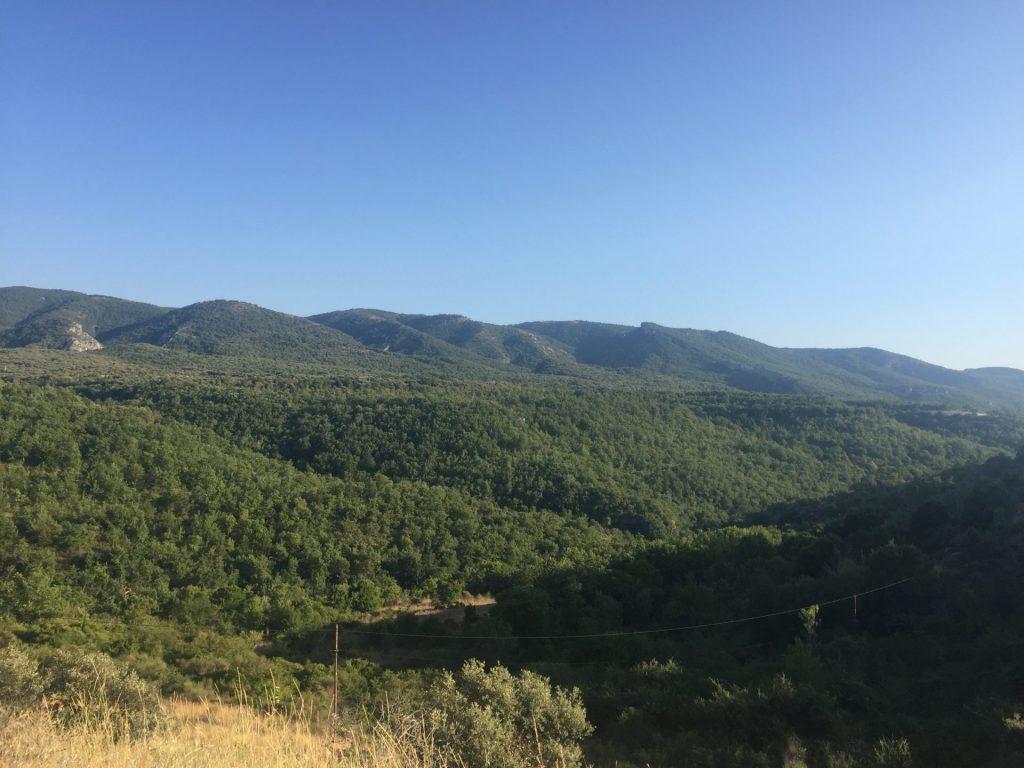 Camping Le Luberon : Img 2308