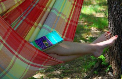 Camping Le Luberon : Ot à La Reception