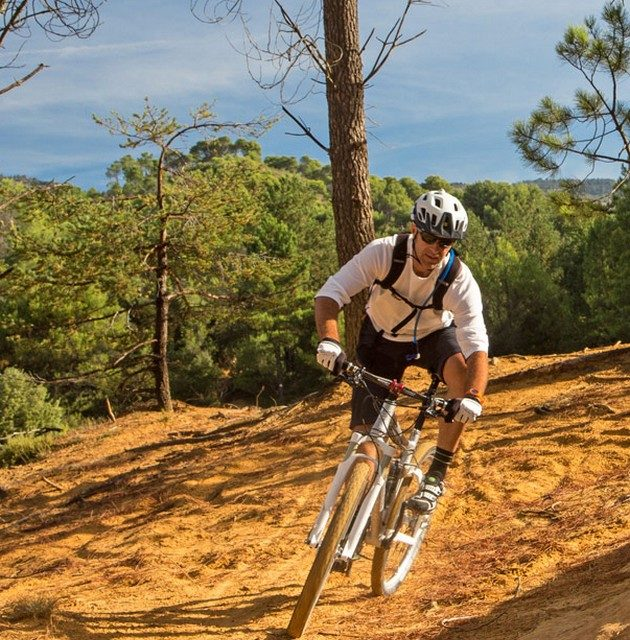 Camping Le Luberon : Sportif